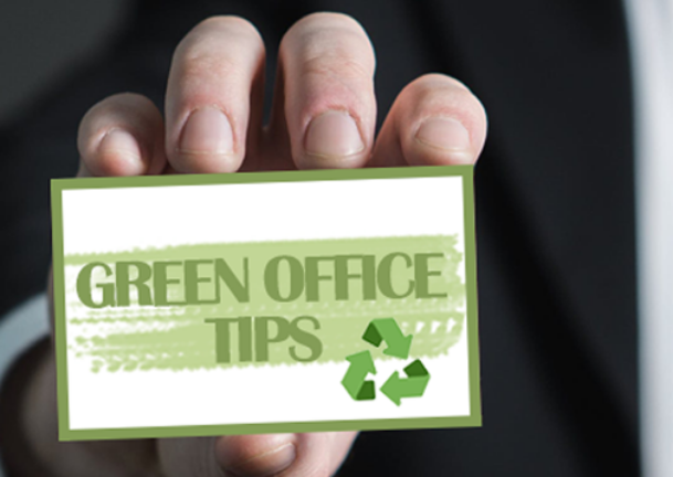Image about 3 Useful tips to sustain an environmentally friendly office